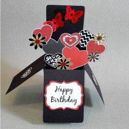 Butterfly Pop Up Birthday Card